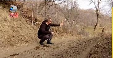 Hotii fac legea in padurile noastre! Ciopartesc copacii si lasa prapad in urma lor! Afla totul intr-un material de exceptie