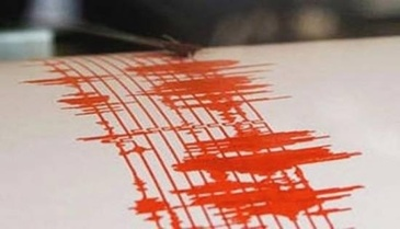 Cutremur cu magnitudinea 3,1 in judetul Buzau