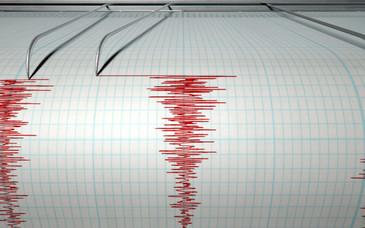 Nou cutremur, cu magnitudinea 2,4, produs in judetul Buzau