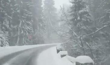 Imagini desprinse din povesti pe drumul spre Poiana Brasov! Peisaj de iarna la sfarsitul lunii aprilie. Imagini spectaculoase