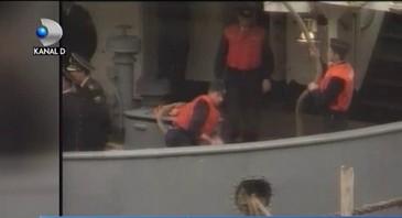 Oile romanesti au reusit sa scufunde o nava militara ruseasca. Incidentul a dat frau liberii glumelor pe seama oitelor. Cum se simt acum animalele