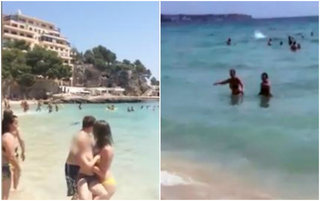 Panica pe plaja! Oamenii ingroziti au inceput sa urle si sa alerge spre mal. Un turist curajos a filmat totul
