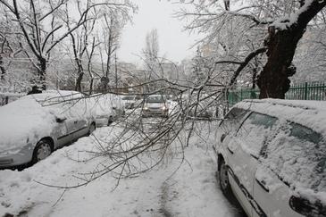 Ninge ca-n povesti in Romania. Asta e localitatea in care stratul de zapada are deja trei centimetri!