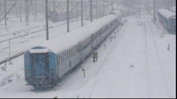 Circulatie feroviara blocata pe magistrala Brasov - Predeal din cauza unui copac cazut pe calea ferata