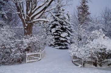 Sarbatori ca in povesti cu zapada sau mocirla si ploi? Iata cum va fi vremea de Craciun si de Revelion!
