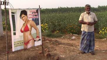 Un fermier a instalat un afis cu o actrita din filmele pentru adulti in apropierea recoltei sale – Motivul este incredibil