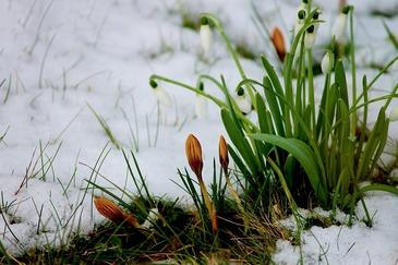 Meteorologii au facut, in sfarsit, anuntul: Primavara vine in Romania! Iata cand se va intampla asta!