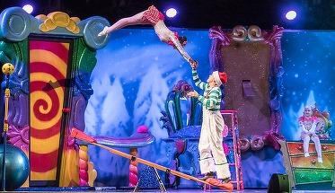Moarte socanta! Un indragit artist de circ a murit pe scena, in fata propriilor spectatori!