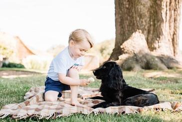 Printul George al Marii Britanii implineste azi 3 ani. Familia Regala a publicat noi fotografii ale micutului