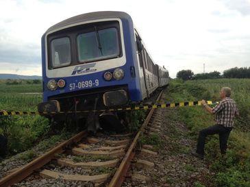 Mai multe persoane au fost ranite dupa ce un tren care calatorea de la Milano la Basel a deraiat in Elvetia