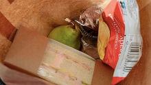 Ce a gasit o profesoara in pachetelul unui elev. A sunat de urgenta la politie