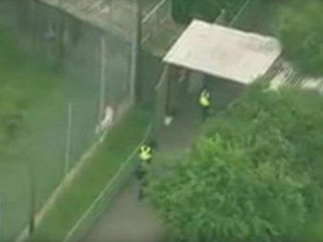 O ingrijitoare de la o gradina zoologica a fost ucisa de un tigru! Toata zona a fost evacuata