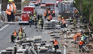 7.000 de gaini au blocat o autostrada aglomerata din Austria