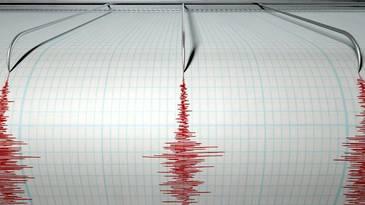 Doua seisme cu magnitudinea peste 5 s-au produs in mai putin de o ora in Noua Zeelanda