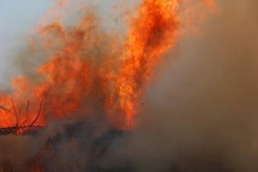 Bilantul victimelor incendiilor de vegetatie din Portugalia si Spania a crescut. Cate persoane si-au pierdut viata
