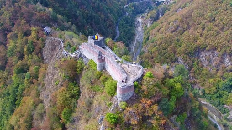 Cetatea Poenari a fost inchisa din cauza ursilor care dau tarcoale in zona - Ce le cer autoritatile turistilor