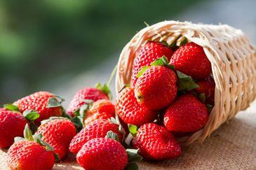 Clasicele fructe au ajuns sa fie servite in restaurante exclusiviste, dar nu cum ne-am obisnuit, ci cu surprize care obliga iubitorii de lux sa scoata o avere din buzunare