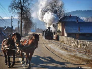 Plimbare cu mocanita de la Moldovita. O calatorie prin sate bucovinene autentice si pe meleaguri de basm. Ati fost aici?