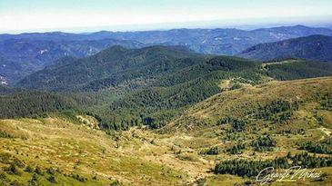 Penteleu, varful de legenda din muntii Buzaului! Masivul e de o frumusete uluitoare