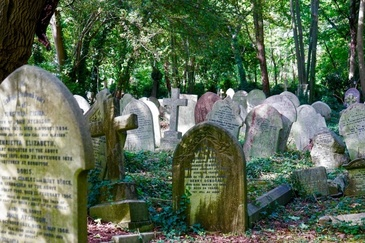 In fiecare an, in ziua mortii, pe mormantul copilului lor, aparea ceva ciudat. Dupa 70 de ani, au aflat adevarul. Ce se intampla de fapt
