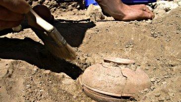 Mai multi arheologi americani au gasit un vas vechi de opt secole, plin cu seminte. Cand si-au dat seama despre ce planta este vorba, au ramas uimiti