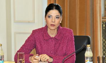 Vicepremierul Ana Birchall s-a intalnit cu Wess Mitchell, adjunctul secretarului de stat american pentru Europa si Eurasia