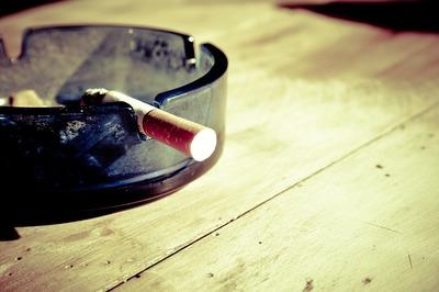 Planta care absoarbe fumul de tigara din casa