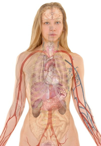 Infectiile urinare te pot imbolnavi grav! Mergi la medic daca ai aceste simptome!