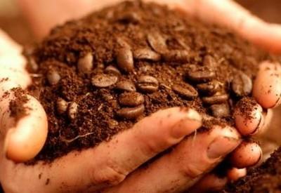 Fa-ti un scrub natural din zat de cafea! Face minuni pentru corpul tau!