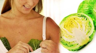Motivul pentru care sa pui frunze de varza pe sani este uimitor!