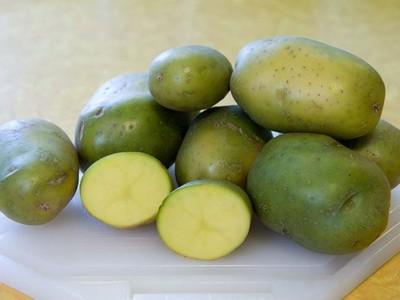 Cele 5 alimente toxice din bucatarie care pot fi fatale