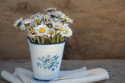 3 ingrediente care iti readuc la viata florile ofilite