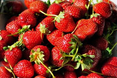 De ce e bine sa consumi capsuni! Pe langa calitatile sale nutritive, aceste fructe parfumate mai ascund un secret