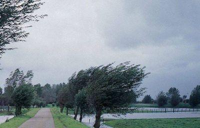 Metorologii, anunţ de ULTIMĂ ORĂ! Se vor semnala ploi torenţiale, grindină şi vijelii! Care sunt zonele afectate
