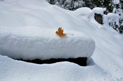 ANM, prognoza meteo: Cicloanele NUMA si OLAF lovesc Romania. Temperaturi negative de saptamana viitoare