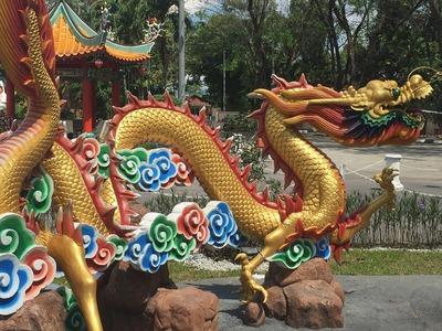 Zodiac chinezesc februarie 2018. Ce-ti rezerva astrele in luna februarie
