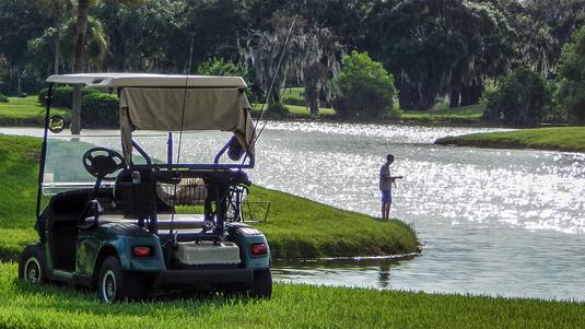 VIDEO | Lovitura anului în golf. A speriat raţele, dar a prins un super peşte