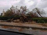 VIDEO Vestul Greciei, lovit de un ciclon tropical mediteranean