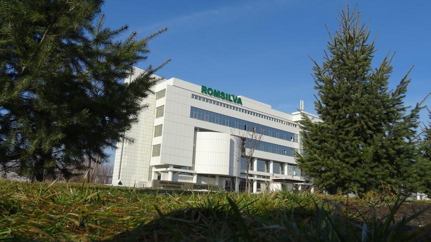 Image result for romsilva