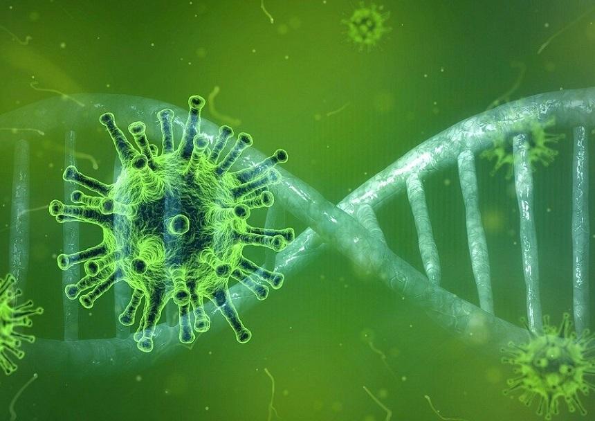 Roche şi Regeneron colaborează la crearea unui medicament cu anticorpi pentru prevenirea şi tratarea Covid-19