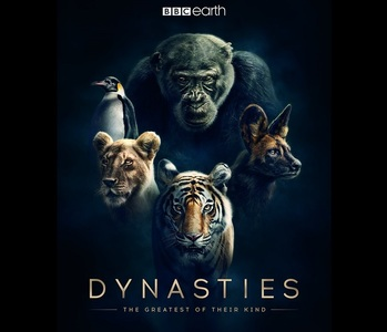 "BBC Earth a lansat un preview al documentarului ""Dynasties"" narat de David Attenborough - VIDEO"