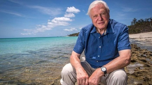 "David Attenborough va fi naratorul serialului documentar ""Our Planet"" pentru  Netflix - VIDEO"