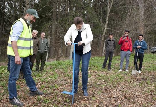 Principesa Maria, ajutată de studenţi să revitalizeze Parcul Regal Sinaia FOTO