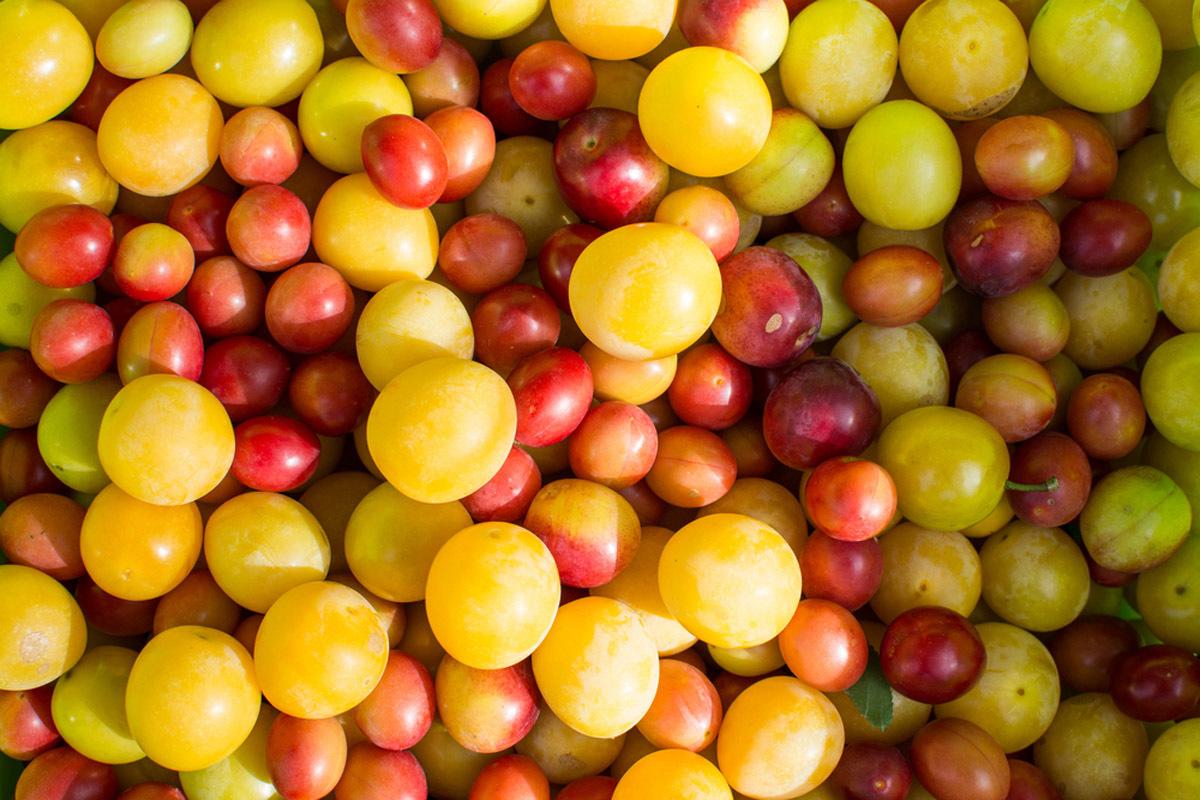 Nu le mai ocoli! Sunt pline de antioxidanţi şi au beneficii unice asupra organismului