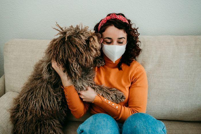 Poţi transmite noul coronavirus câinelui sau pisicii? Cercetătorii au aflat răspunsul
