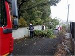 Furtuna s-a dezlantuit in Arges. Strazile au fost inundate, iar zeci de copaci au fost pusi la pamant