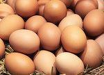 Ouale au ajuns mai scumpe decat carnea! Un carton de oua ajunge si la 20 de lei