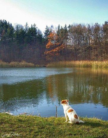 Lacul Meledic, una din multele minuni ale naturii insirate pe frumoasa vale a Slanicului. Oamenii locului spus ca nu are fund