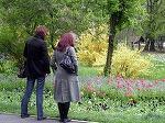 Parcul Herastrau va deveni Parcul Regele Mihai I. Consilier USR: Ne grabim, nu avem nicio dezbatere si nici macar punctul de vedere al Casei Regale