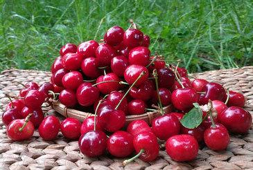 Nu e de gluma! Ai grija de unde cumperi cirese! Statul Roman a confiscat peste 550 de kilograme de fructe dupa ce au gasit ASTA in ele! GROAZNIC